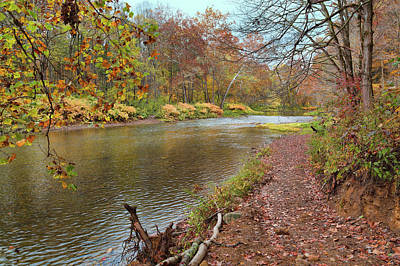 Photograph - Creekside Trail by John M Bailey