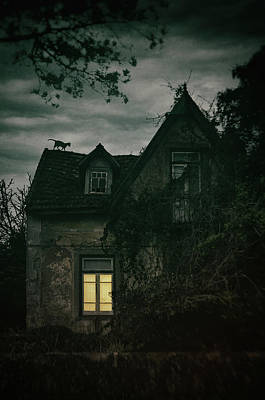Photograph - Creepy House With Cat by Carlos Caetano