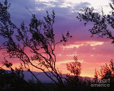 Photograph - Creosote Sky by Suzette Kallen