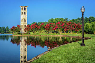 Furman Photograph - Crepe Myrtle Row by Chilehead Photography