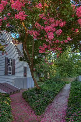 Photograph - Crepe Myrtle Shower by Jerry Gammon