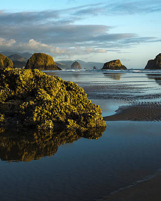 Photograph - Crescent Beach by Robert Potts