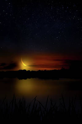 Photograph - Crescent Moon At Big Cypress by Mark Andrew Thomas