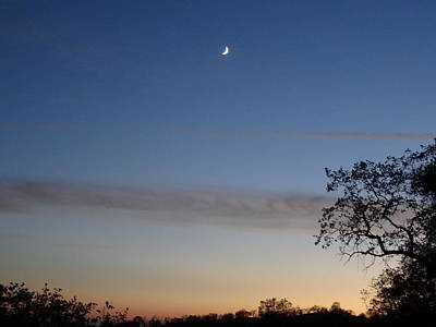 Photograph - Crescent Moon At Dusk by Jim Taylor