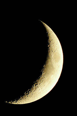 Photograph - Crescent Moon by Catie Canetti
