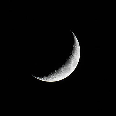 Photograph - Crescent Moon by Darryl Hendricks