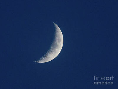 Photograph - Crescent Moon by Kevin McCarthy