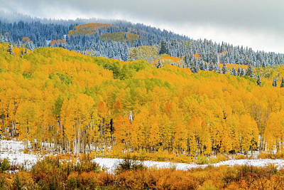 Photograph - Crested Butte Colorado Autumn Color by Teri Virbickis