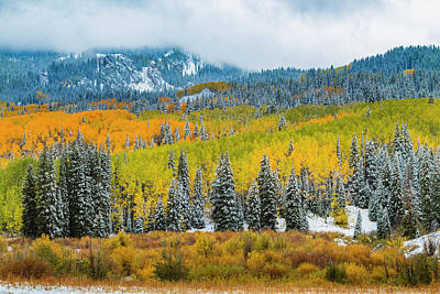 Photograph - Crested Butte Colorado Fall Color And Snow by Teri Virbickis