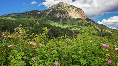 Photograph - Crested Butte by Constance Reid