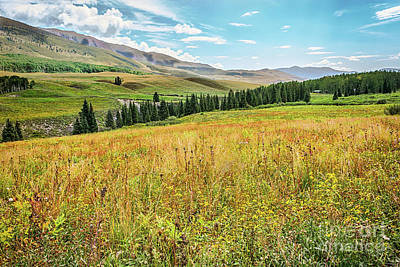 Photograph - Crested Butte by Susan Warren