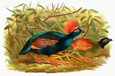 Crested Partridge Original
