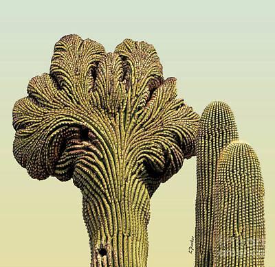 Crested Saguaro - 1 Art Print by Linda Parker