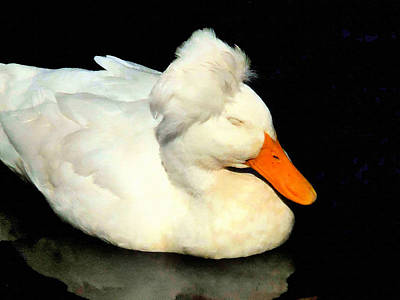 Crested Duck Painting - Crested White 4 by Lanjee Chee
