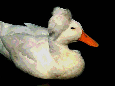 Crested Duck Painting - Crested White 5 by Lanjee Chee