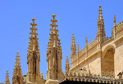 Cresterias Granada Cathedral Roof Details Art Print