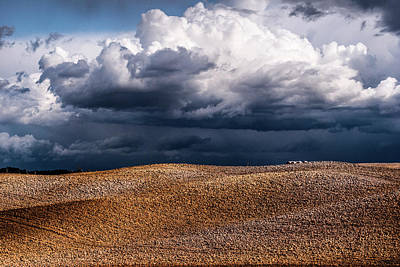 Photograph - Crete Senesi by Yuri Santin