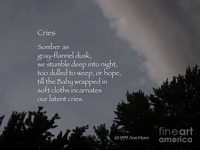 Photograph - Cries by Ann Horn