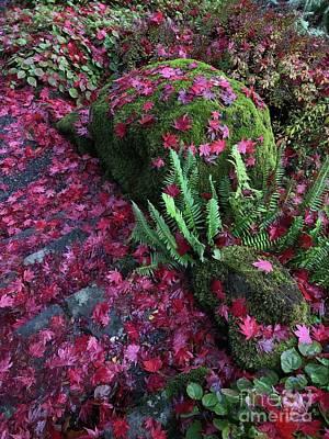 Photograph - Crimson Autumn  by Charlene Mitchell