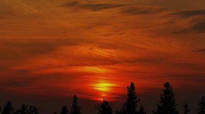 Photograph - Crimson Brush Strokes by Todd Rojecki
