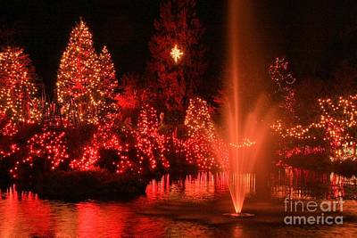 Photograph - Crimson Christmas by Frank Townsley