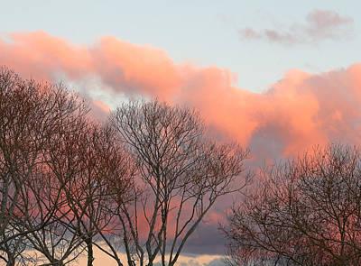 Photograph - Crimson Sky by Nicholas Blackwell