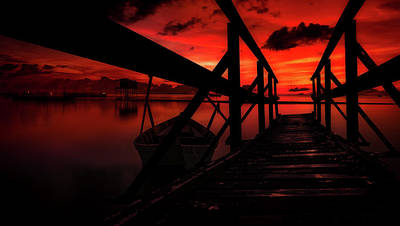 Photograph - Crimson Solitude by Der Typ Von Nebenan