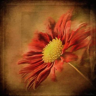 Mixed Media Royalty Free Images - Crimson Sunburst Royalty-Free Image by Teresa Wilson