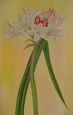 Painting - Crinum Bulbispermum  by Marinella Owens