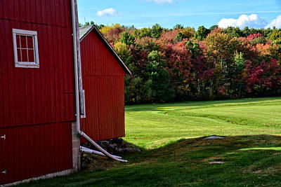 Photograph - Crisp Fall Afternoon by Mike Martin