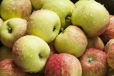 Photograph - Crisp Wild Apples by Kathryn Whitaker