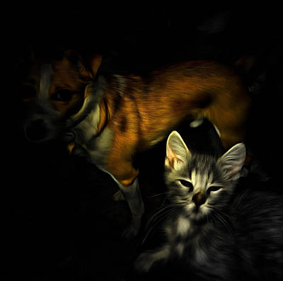 Plotting Digital Art - Critter Halloween by Dorothy Berry-Lound