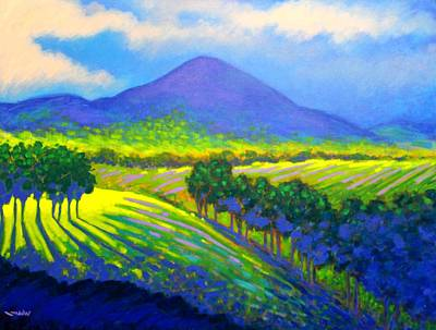 Irish Painting - Croagh Patrick County Mayo by John  Nolan