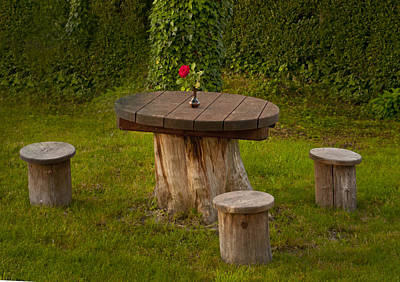 Photograph - Croatian Picnic Table by Don Wolf
