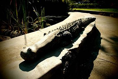 Photograph - Crocodile Carving 02 by Dora Hathazi Mendes