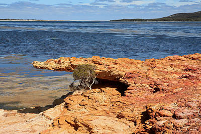 Photograph - Crocodile Rock  Millers Point Wa by Tony Brown