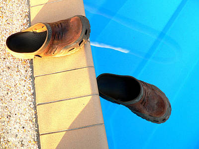 Photograph - Crocs In Pool by Kathy K McClellan