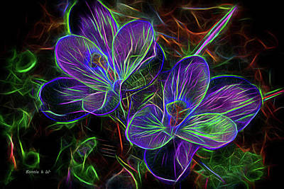 Digital Art - Crocus Aglow by Bonnie Willis