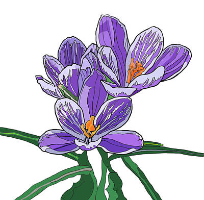 Painting - Crocus by Jamie Downs