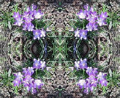 Photograph - Crocus Mandala 1 by Julia Woodman