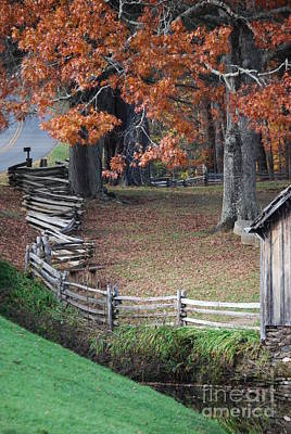 Crooked Fence Art Print by Eric Liller