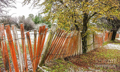 Photograph - Crooked Fence Line by Lexa Harpell
