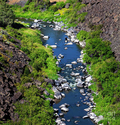 Photograph - Crooked River Oregon by David Millenheft