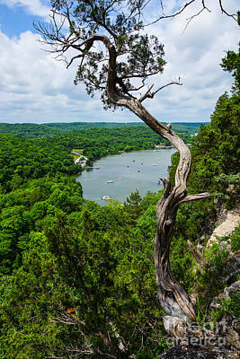 Photograph - Crooked Tree Bluff by Jennifer White
