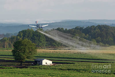 Photograph - Crop Dusting by Nicki McManus