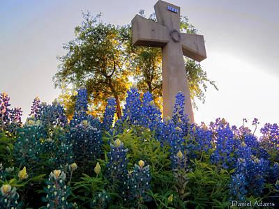 Da225 Cross And Texas Bluebonnets Daniel Adams Art Print