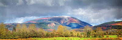 Photograph - Cross Keeper Hill 24x8 by Dominick Moloney