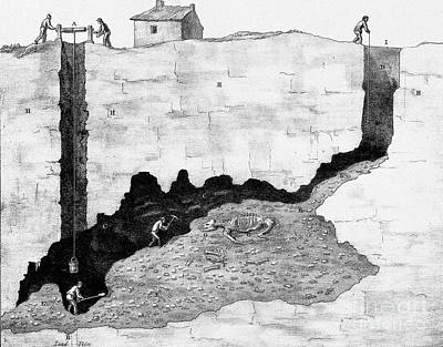 Cross-section Of Lead Mine With Fossil Art Print by Wellcome Images