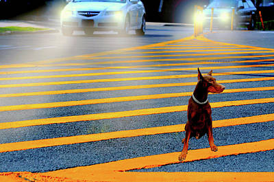 Digital Art - Crossing Guard by Diana Angstadt
