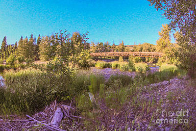 Photograph - Crossing Paths Methow Valley Landscapes By Omashte by Omaste Witkowski